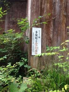 yagaijin6(131)